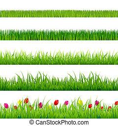groot, groen gras, en, bloemen, set