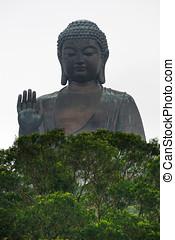 groot, hong, boeddha, kong