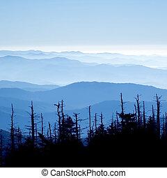groot, rokerig, nationaal park, bergen