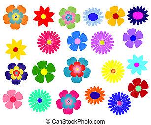groot, set, og, kleurrijke bloemen