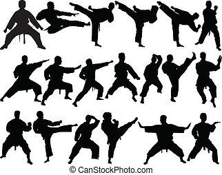 groot, verzameling, van, karate