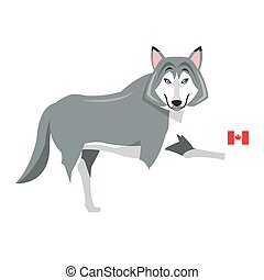groot, vlag, pictogram, wolf, canadees