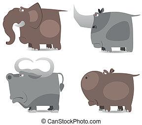 groot, wilde dieren, set