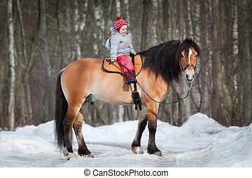 groppa, -, bambino, sentiero per cavalcate, uno, cavallo, in, winter.