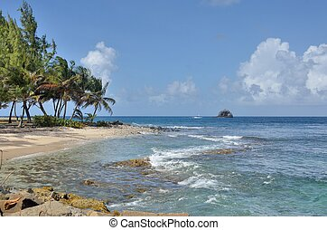 Gros Islet st lucia