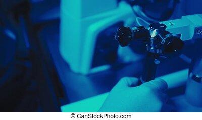 gros plan, échantillons, moderne, scientifique, examine, experiments., embryologist, laboratoire, mains, microscope, conduite