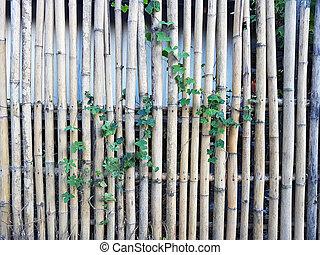 gros plan, barrière, outdoor., parc, fond, bambou