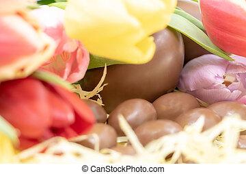 gros plan, coloré, tulipes, oeufs, entouré, chocolat, paques