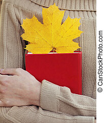 gros plan, feuille, tenue, jaune, automne, livre, femelle transmet, érable