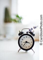 gros plan, fleur, horloge, reveil, lavande, arrière-plan., bokeh, noir
