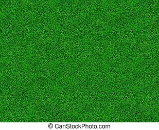 gros plan, image, de, frais, printemps, herbe verte