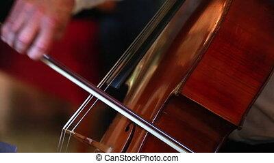 gros plan, jouer, violoncelle