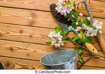 gros plan, pomme, bois, floraison, branche, outils, jardin, surface