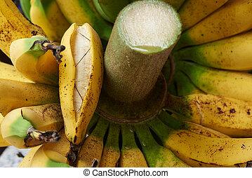 gros plan, tas, banane, mûre, vue