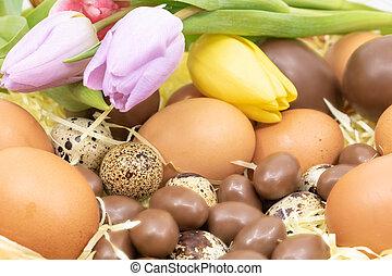 gros plan, tulipes, oeufs, chocolat, poulet, divers, panier,...