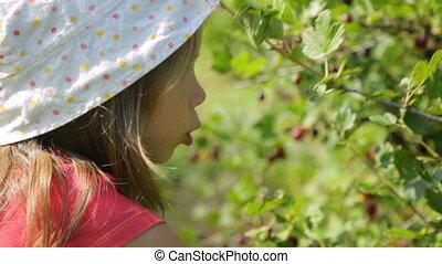 groseilles maquereau, jardin, girl, peu, cueillette