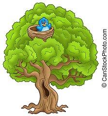 grote boom, met, blauwe vogel, in, nest