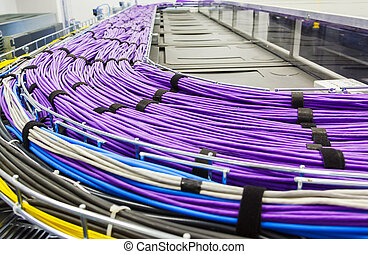 grote groep, van, sering, utp, kabels