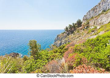 grotte, ciolo, -, leuca, kuesten, apulia, vegetation