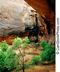 Grotto and Arch, Canyonlands National Park, Moab, Utah -...