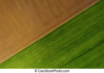 Ground and grass texture background photographed from the air