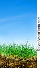 Ground, grass, sky cross section - Ground, grass, sky. Cross...