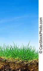 Ground, grass, sky cross section