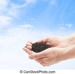 ground in human palms on blue sky background