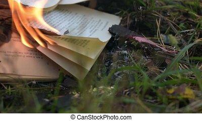 ground., płonący, książka, przez, liście, strona, wiatr