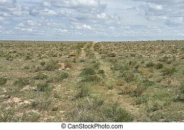 Ground road in the desert.