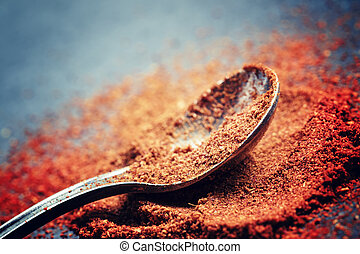 Ground sweet red paprika in a spoon on a dark background, selective focus, shallow depth of field