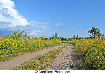 ground zigzag road in the meadow before thunderstorm, blue sky with white clouds, travel details