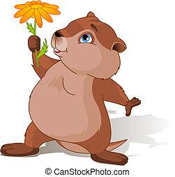 A cartoon groundhog holding a first spring flower.