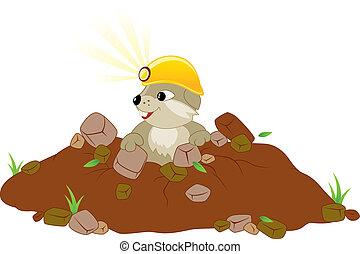 groundhog, giorno