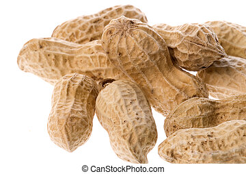 Groundnuts Isolated - Isolated macro image of groundnuts.