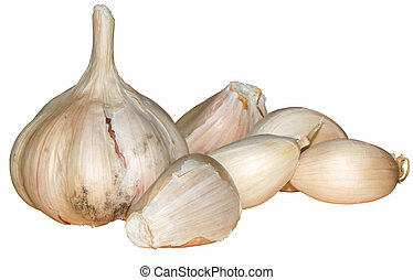 Group Fresh garlic on white backgroud