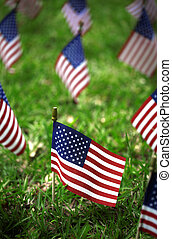 Group of American flags in green grass