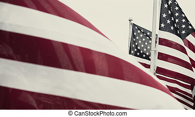 Group of American flags in Haymarket, Virginia