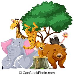 Group of animals under the tree