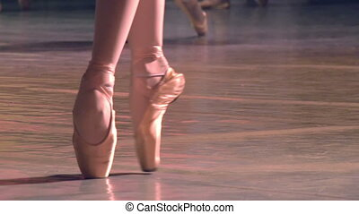 Group of Ballet Dancers - Ballerina shows classic ballet pas...