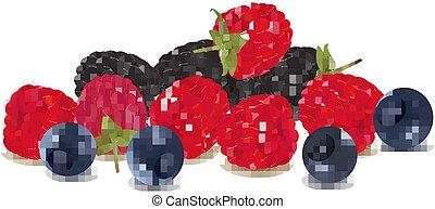 Group of berries.