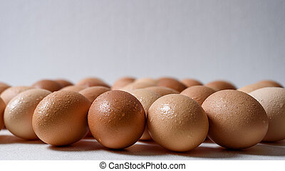 Group of brown rustic eggs in water drops on white background front view