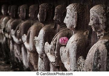 Group of buddha statue