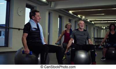 Group of cheerful seniors in gym doing exercise with dumbbells on fit balls.