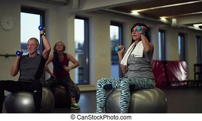 Group of cheerful seniors in gym doing exercise with...
