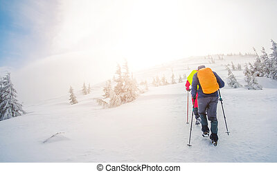 Group of climbers walking the trail in winter