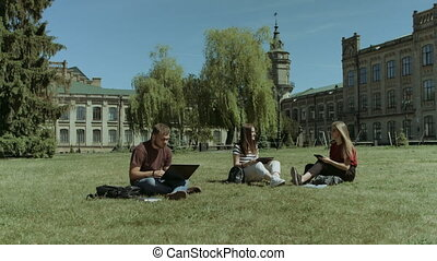 Group of college students studying on campus lawn