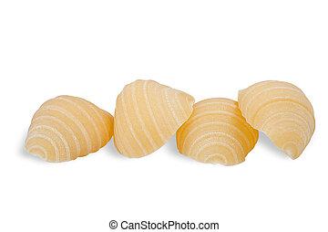 Group of conchiglie italian pasta