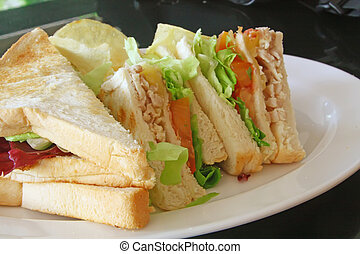 Group of Cut Toasted Sandwiches on a White Plate
