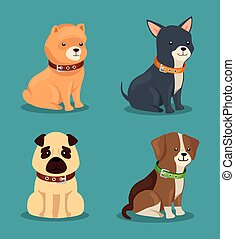 group of cute dogs animals